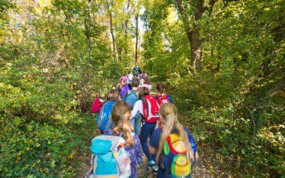 Skole i skogen – et godt læringsmiljø